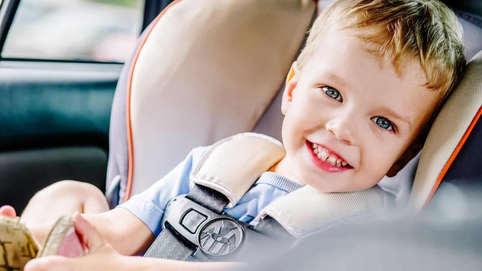 Mammoth Flame Retardant Free Merino Wool Clek 2020 Liing Infant Car Seat